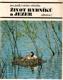 Život rybníků a jezer : pro čtenáře od devíti let